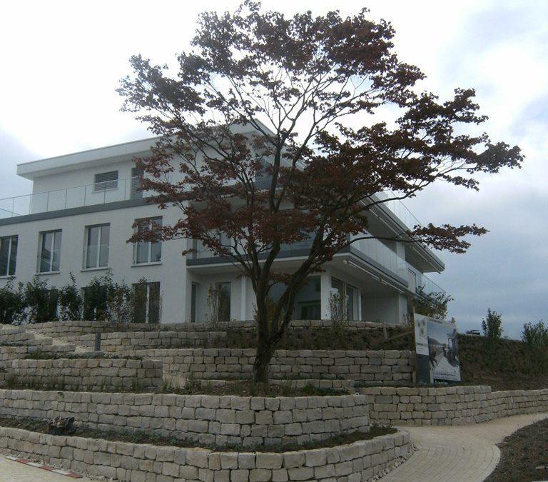 Neubau 3 MFH, Minergie