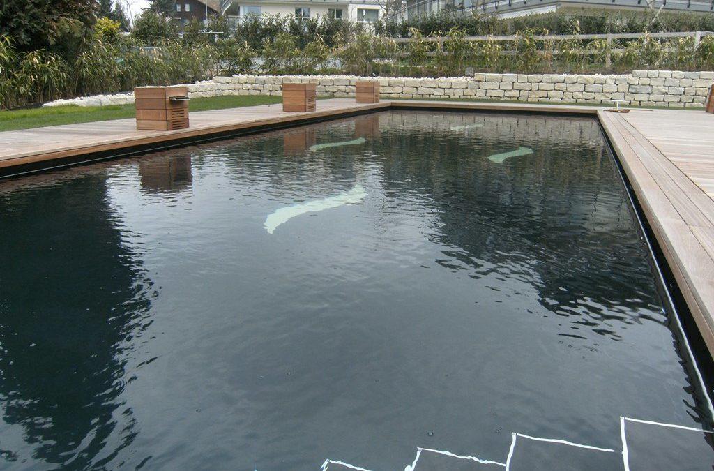 Neubau Pool mit Gartenhalle
